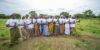 En juillet, l'Alliance Globale du Karité célèbre le mois du karité