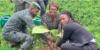 Université de Cocody : Une association d'étudiants plante plus de 1000 arbres sur le campus